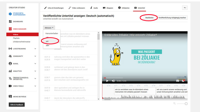 srt-Datei aus Youtube laden